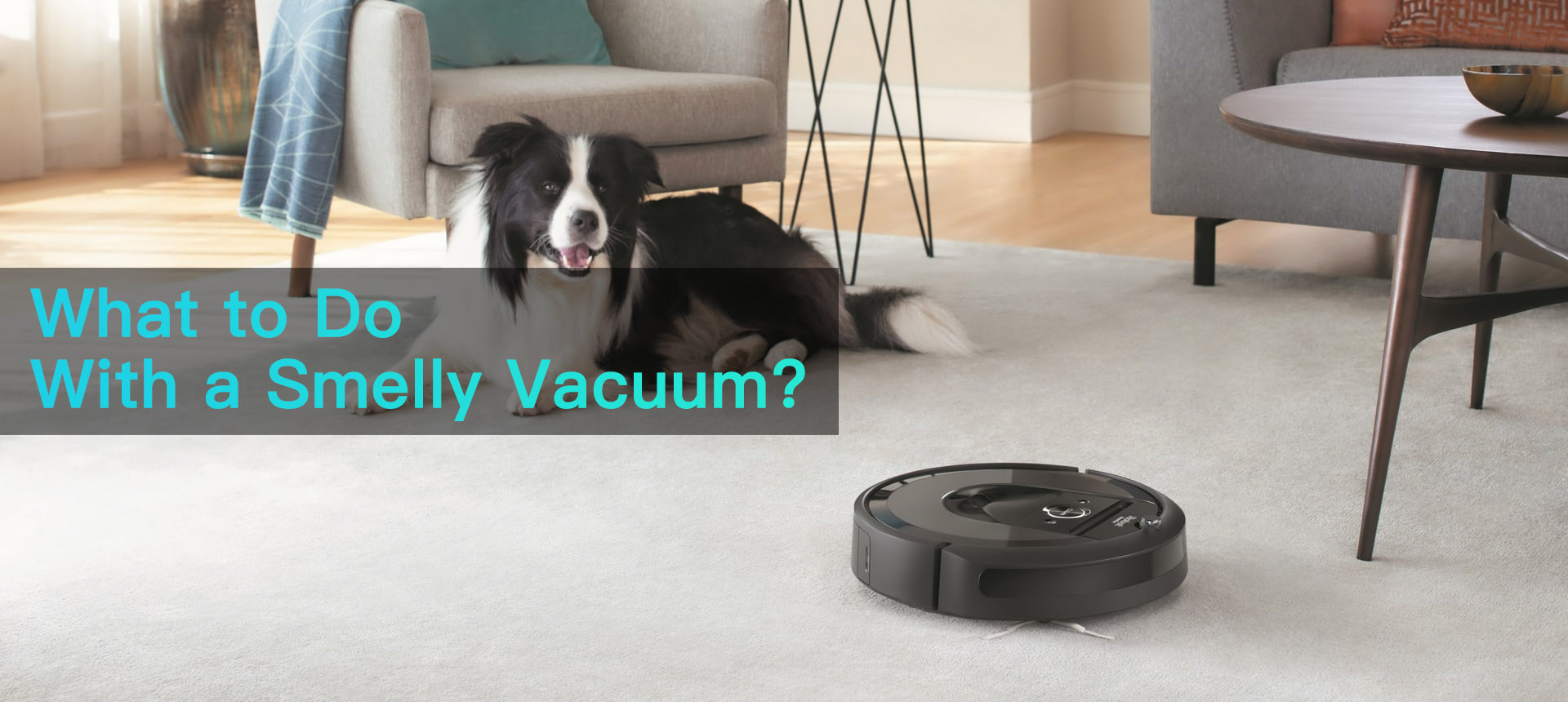 How to Remove Bad Vacuum Cleaner Smells?