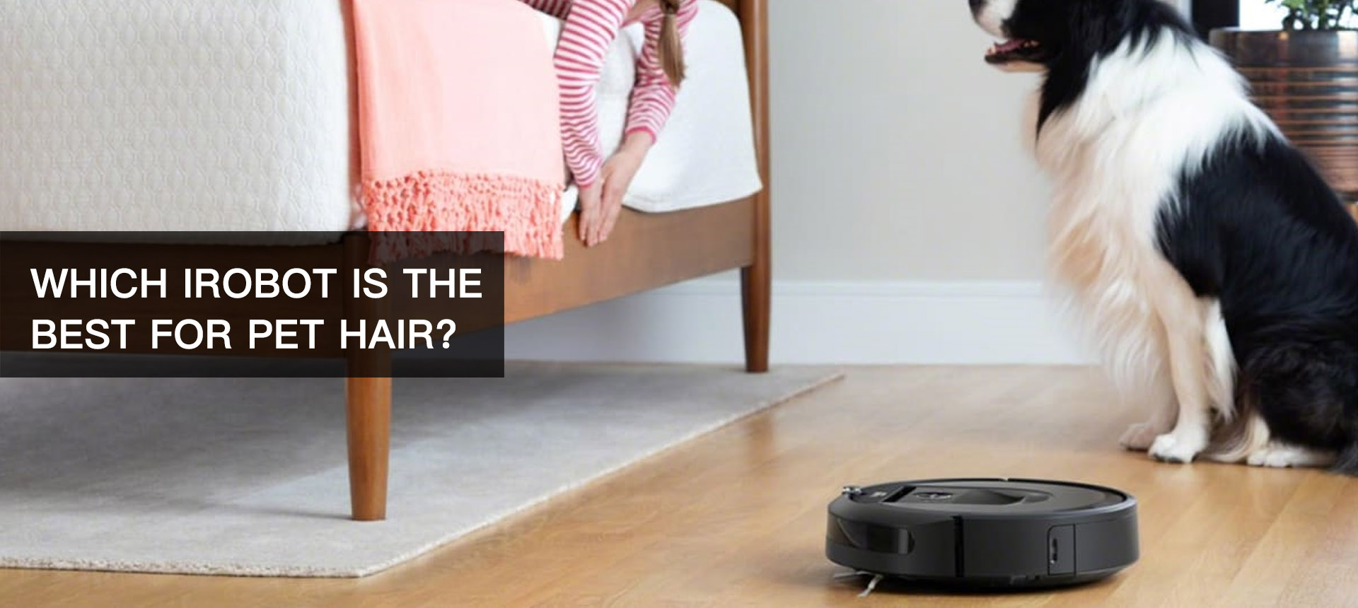 Which iRobot is the Best for Pet Hair