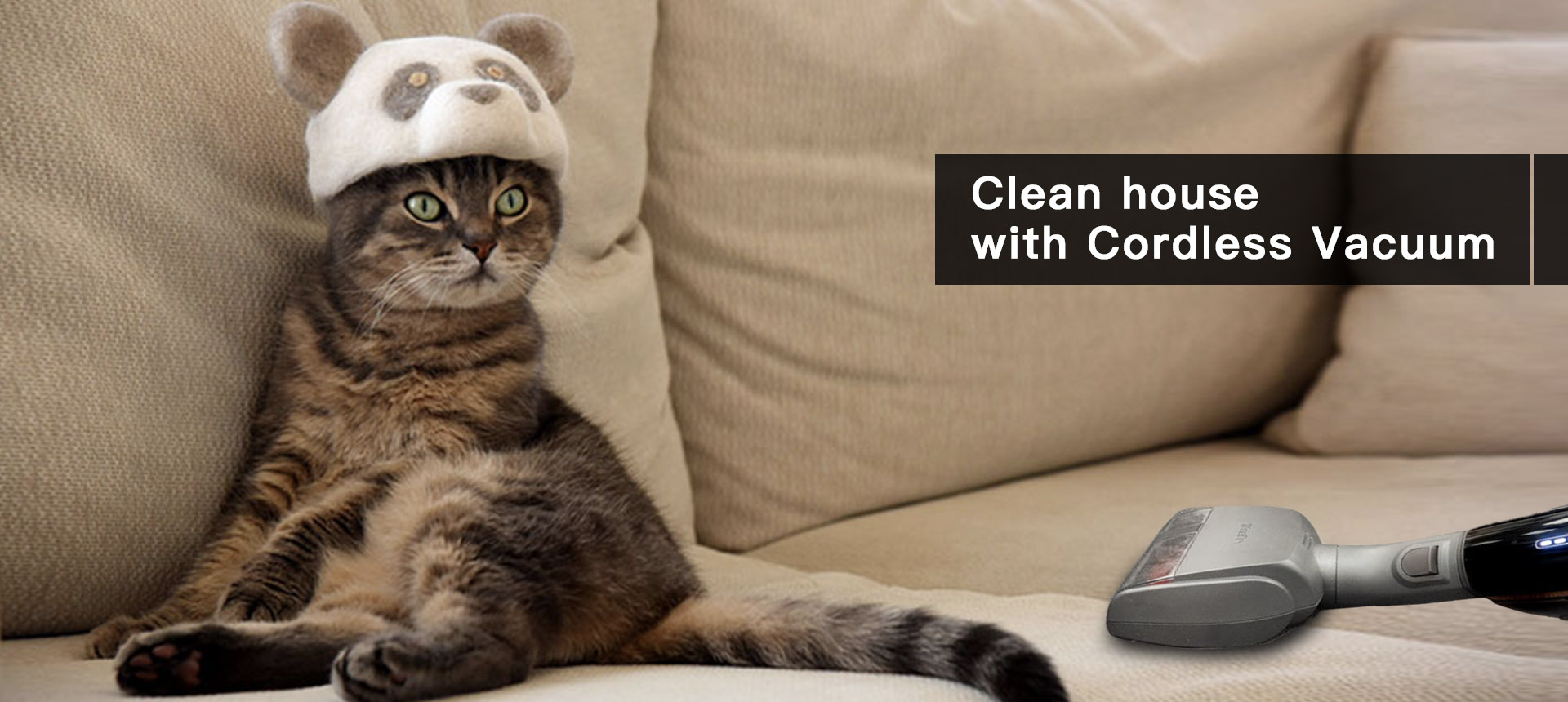 Clean house with hairy pets
