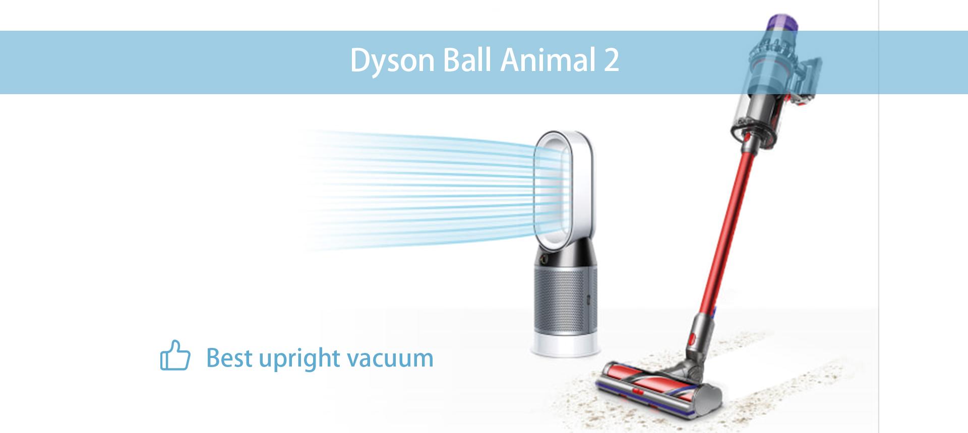 Dyson Ball Animal 2
