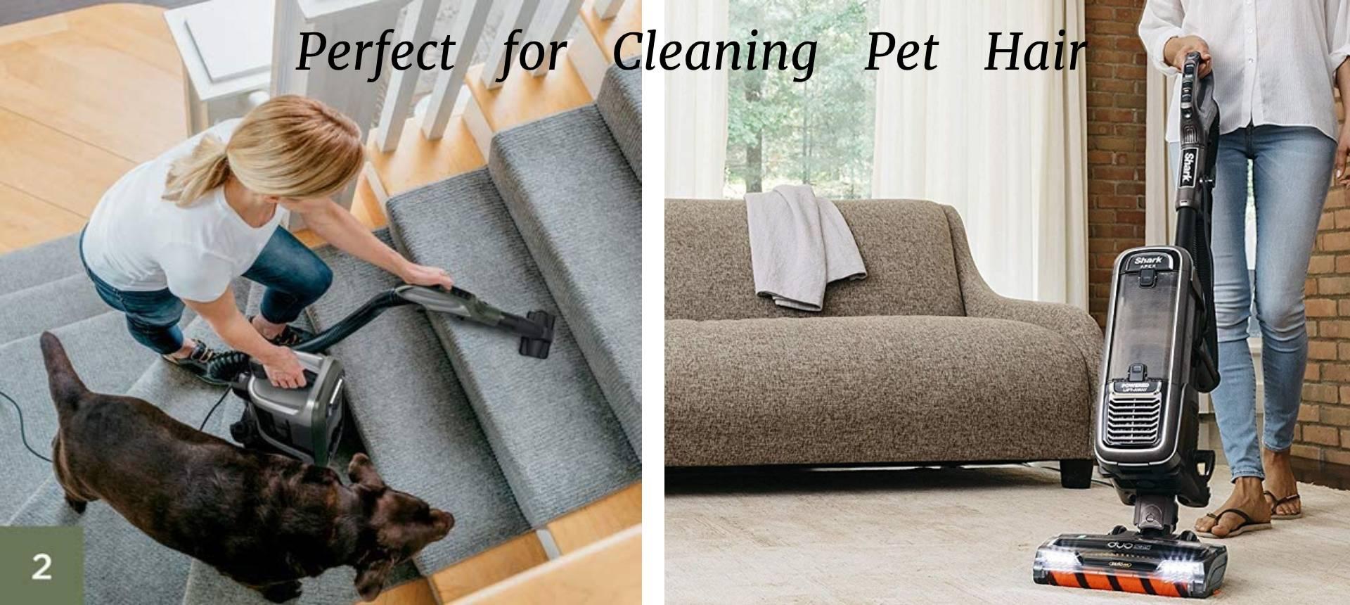 AZ1002 clean Pet Hair