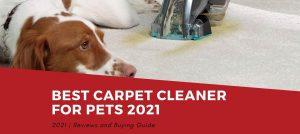 Best Carpet Cleaner For Pets 2021