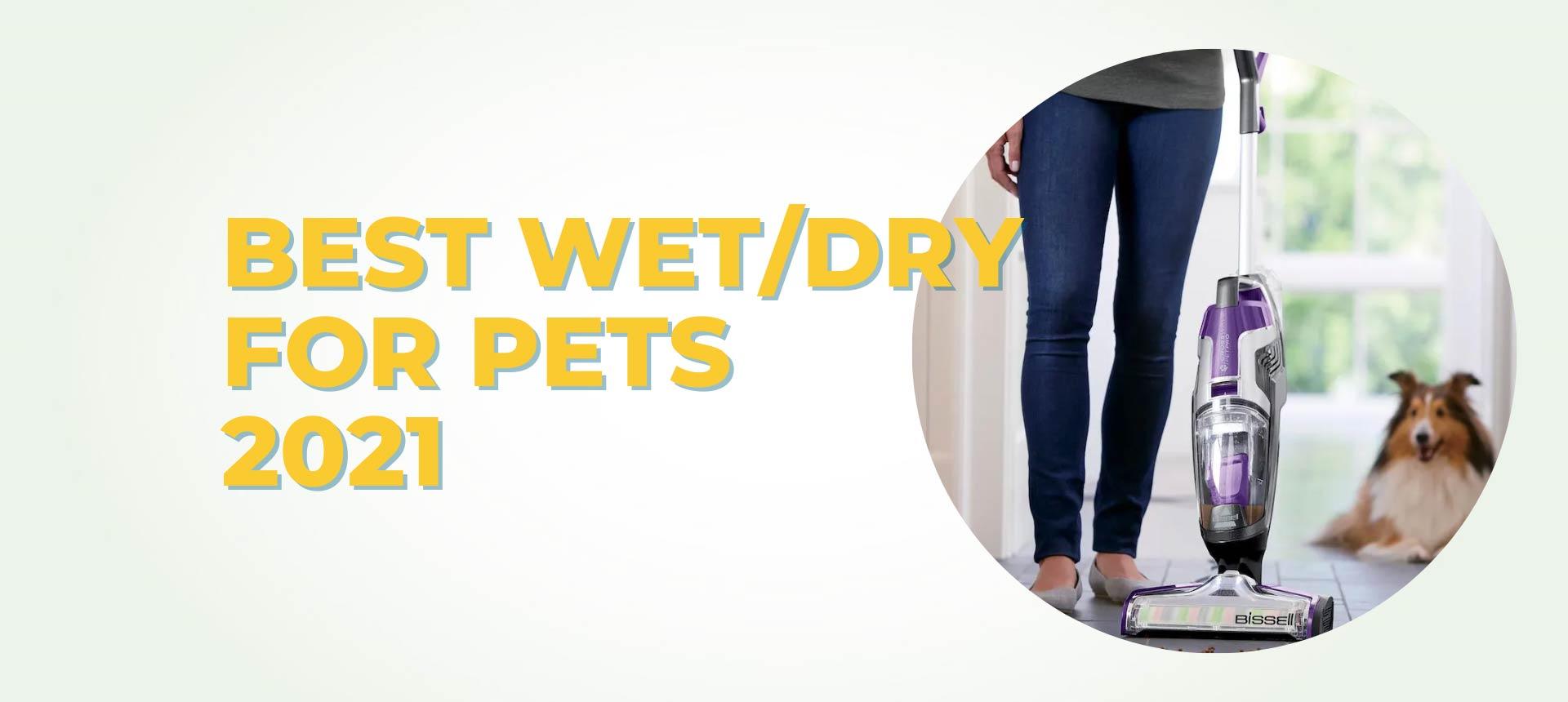 Best Wet/Dry Vacuum For Pets 2021