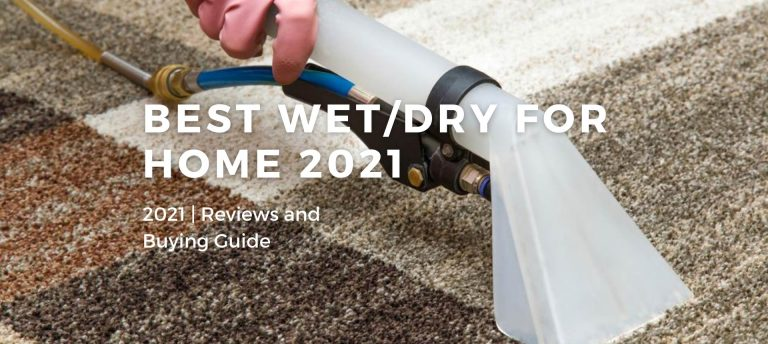 Best Wet/Dry Vacuums For Home 2021
