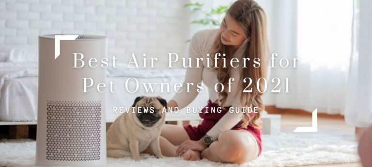 Best Air Purifiers for Pet Owners of 2021