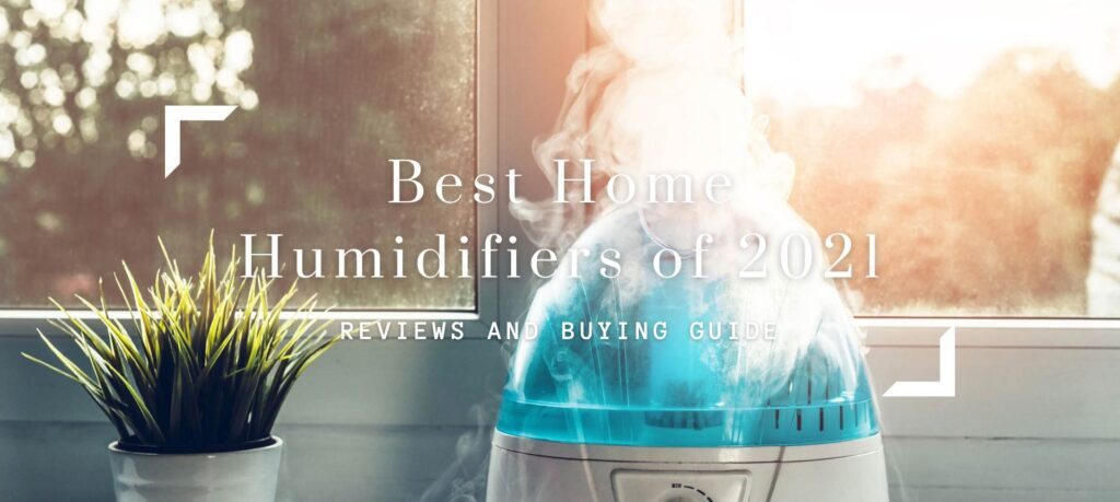 Best Home Humidifiers of 2021