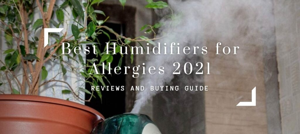Best Humidifiers for Allergies 2021