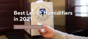 Best Levoit Humidifiers in 2021: Buying Guide