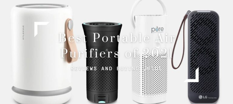 Best Portable Air Purifiers of 2021