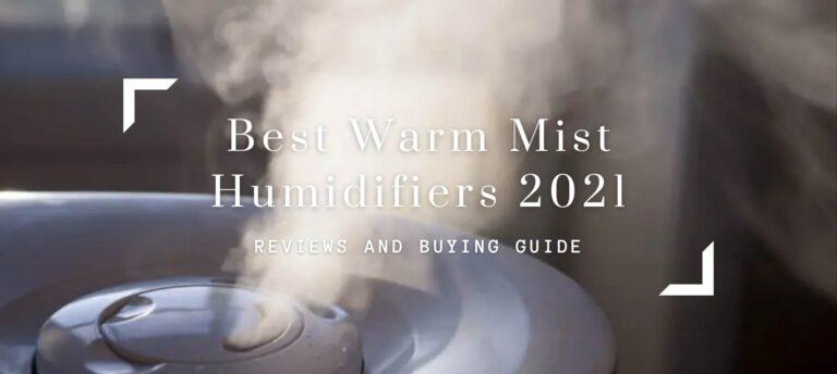 Best Warm Mist Humidifiers 2021