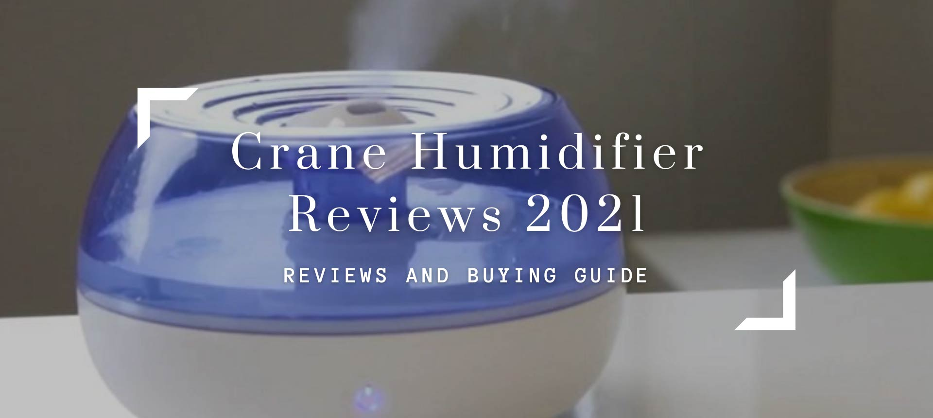 Crane Humidifier Reviews 2021 - Best Model
